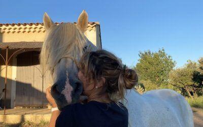Visite à la ferme avec les juments et les poulains
