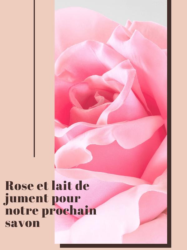 savon lait de jument et rose naturel et hydratant